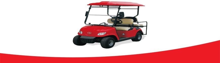 Batería para Carro de Golf